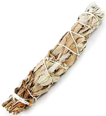 White Sage Smudge Stick 6""
